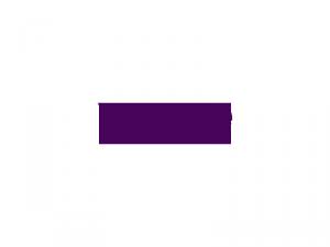 logo_final_violet